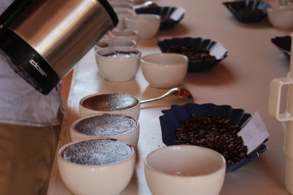 coffee tasing and cupping