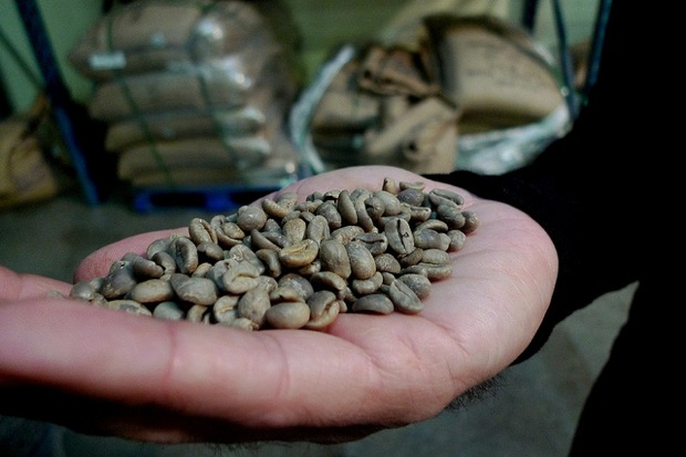 bags of arabica back on market after hurricane