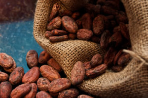 Cocoa beans from the Ivory Coast