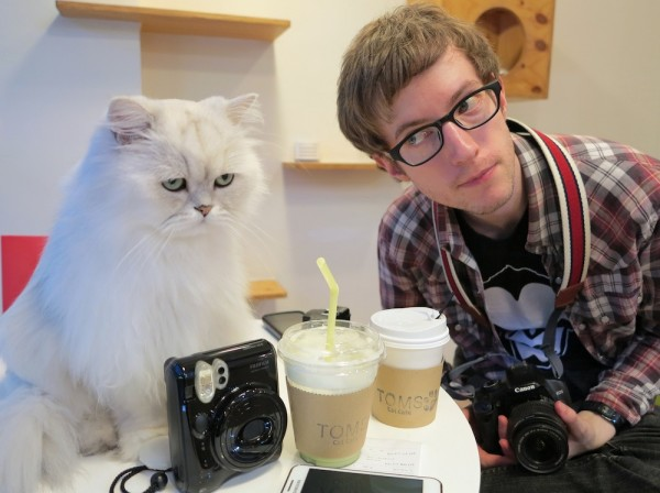 cat cafe coffee felines