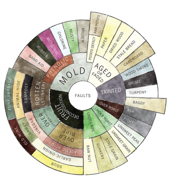 The Counter Culture Coffee Taster's Flavor Wheel (faults descriptors)