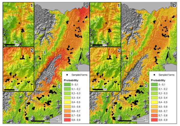 Figure 2. Identification of high quality niches: Probability of the beans produced in Cauca and Nariño to have high acidity (left map) and high flavor (right map) content (from Oberthür et al, 2011).