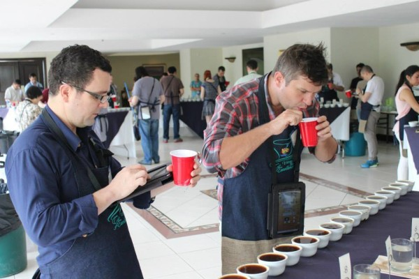 cup of excellence el salvador