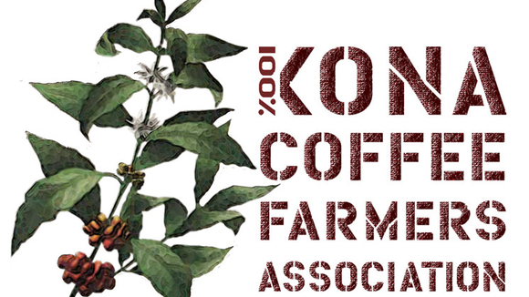 Kona Coffee Leaders Renew Push for Purity Standards and Packaging Disclosure