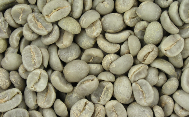 1024px-75_degrees_green_coffee-620x386
