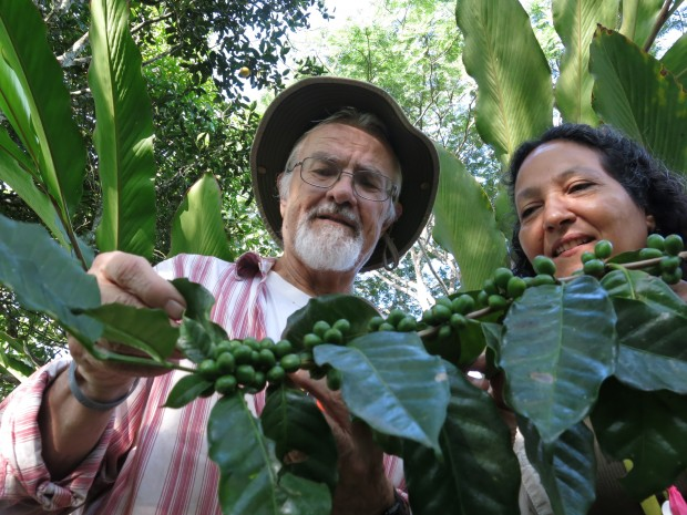 Finding Natural Solutions to Destructive Leaf Rust in Chiapas, Mexico
