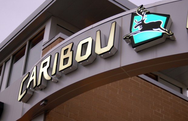 Nitro Cold Brew Ready for Prime Time at Caribou Coffee
