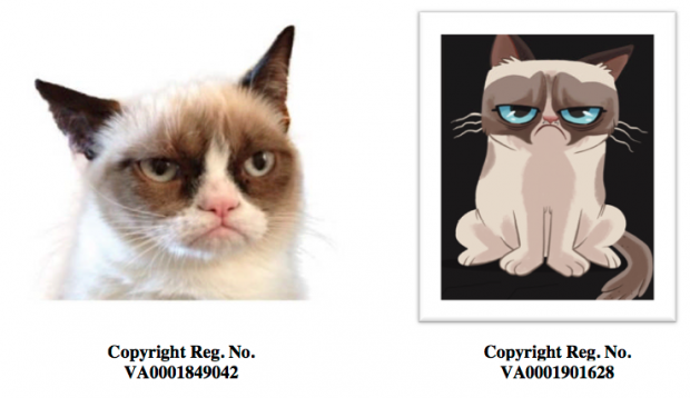 Grumpy Cat Owners File Suit Against the Grumpy Coffee People