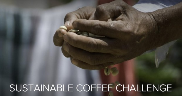 sustainable coffee challenge