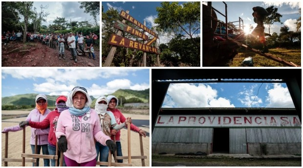 A Photo Journey to La Revancha Estate in Nicaragua