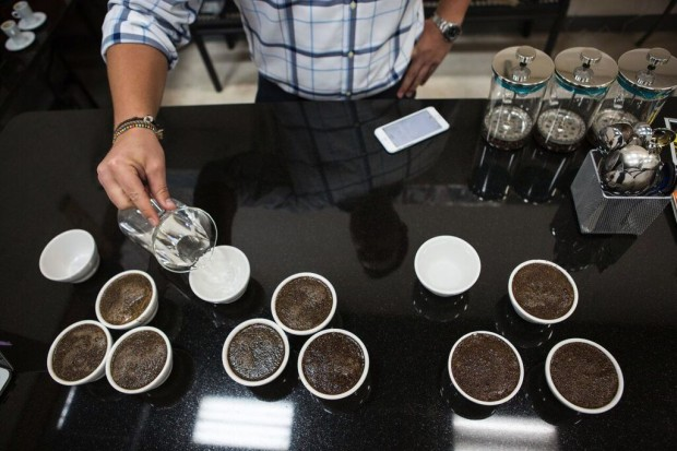 Per'La Roasters a New Jewel in South Florida's Specialty Scene