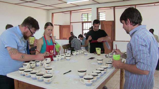 Beth Ann Caspersen (Equal Exchange), Tim Hill (Counter Culture), Caleb Nicholes (Kickapoo Coffee), Stephen Vick (Blue Bottle) cupping during the inaugural Saveur du Kivu last year.