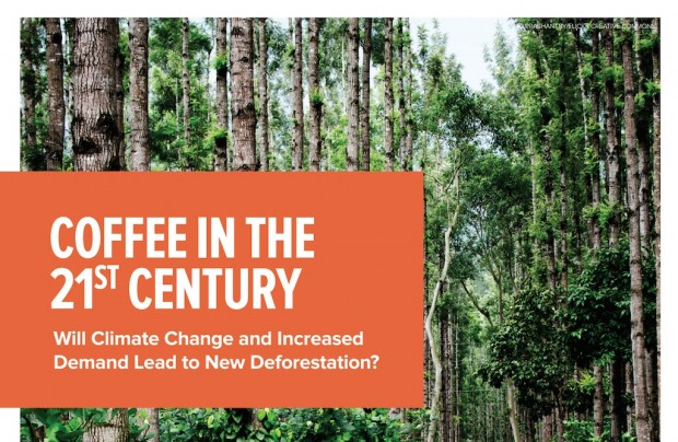 coffee climate change