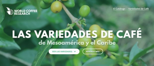 World Coffee Research Launches First-of-Its-Kind Coffee Variety Catalog