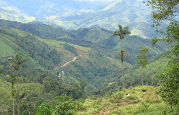 Following Colombian Peace Agreement, Nespresso and FNC Work to Rebuild Coffee in Caquetá