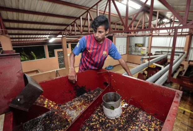 Martin López, at a wet mill at La Revancha Coffee Estate in Matagalpa, Nicaragua. Photo by Oscar Leiva for CRS.