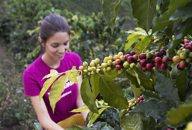 The Inspired, Farmer-Forward Model of Maria Palacio's Progeny Coffee