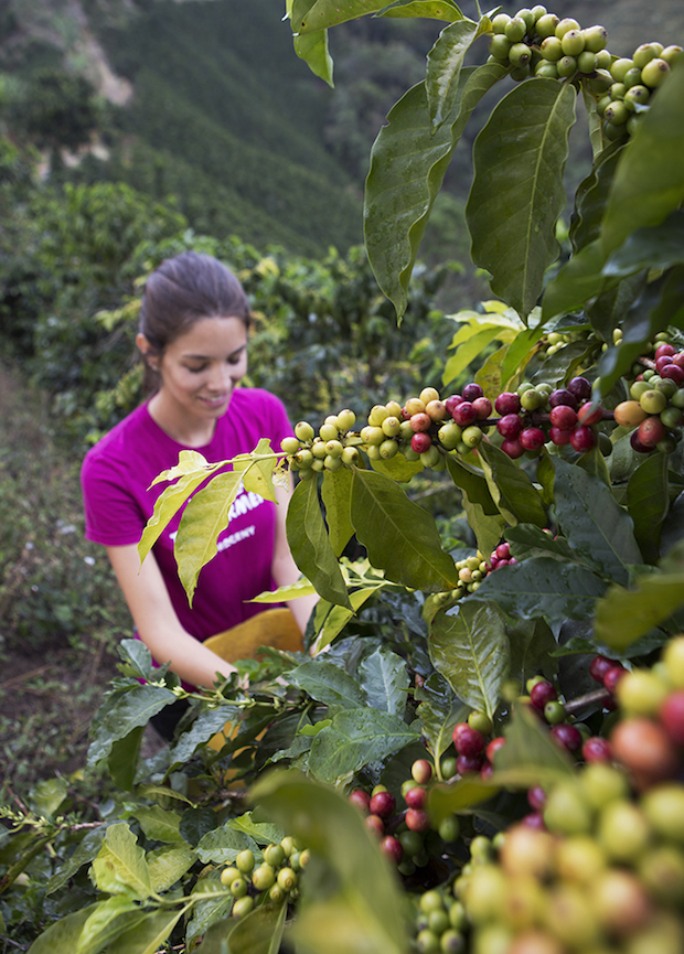 Maria Palacio in the coffee fields earlier this year. All images courtesy of Progeny Coffee.