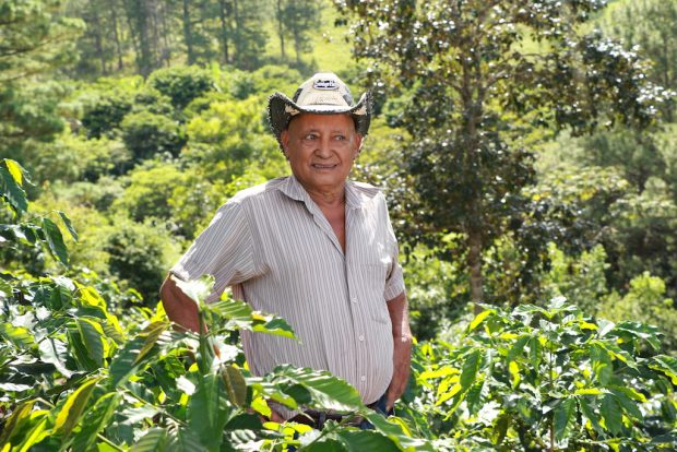 Don Napolean is a producer from the Guama Danta region. Images courtesy of Genuine Origin Coffee Project.