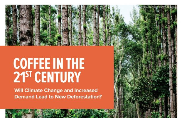 coffee-climate-change