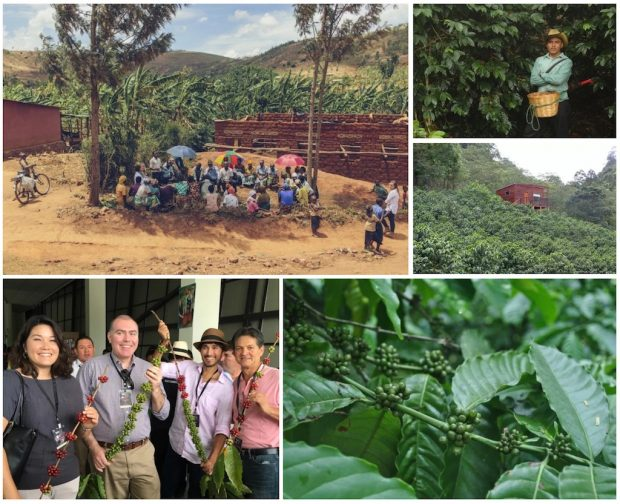 Mounting Obstacles and Innovation: The 2016 Coffee Origin Year in Review