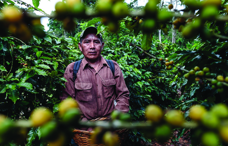 "Lionso Hernández, 45, has been working as a coffee picker at La Revancha for 10 years. ""I am happy because the Fair Trade Committee of workers lends us money when we need it,"" he says. ""No one wants to lend money to agricultural workers."""