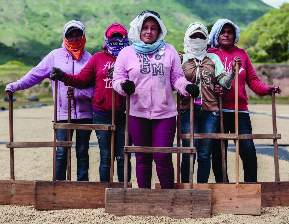 Debia Elena Arbizu Rivas (center), 24, and other women from Matagalpa on the coffee drying patios at La Providencia.