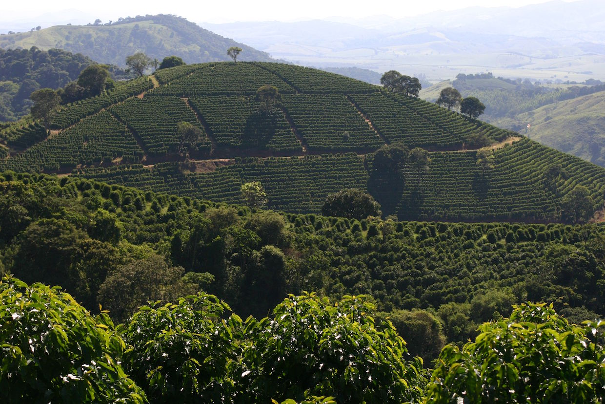A Nobletree-owned farm in Brazil.