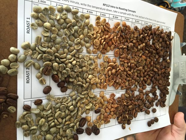 Lighter Roasts Better for Antioxidant and Anti-Inflammatory Properties, Research Shows