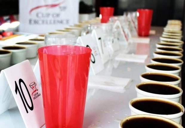 Quality Shines at Peru's First Cup of Excellence Competition