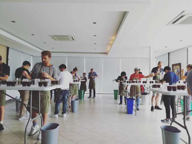 Lots of 90+ at First Colombia Cup of Excellence Since 2015