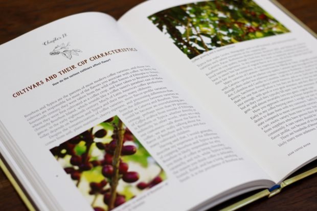 'Dear Coffee Buyer' a Practical, Opinionated Guide to Sourcing Coffee