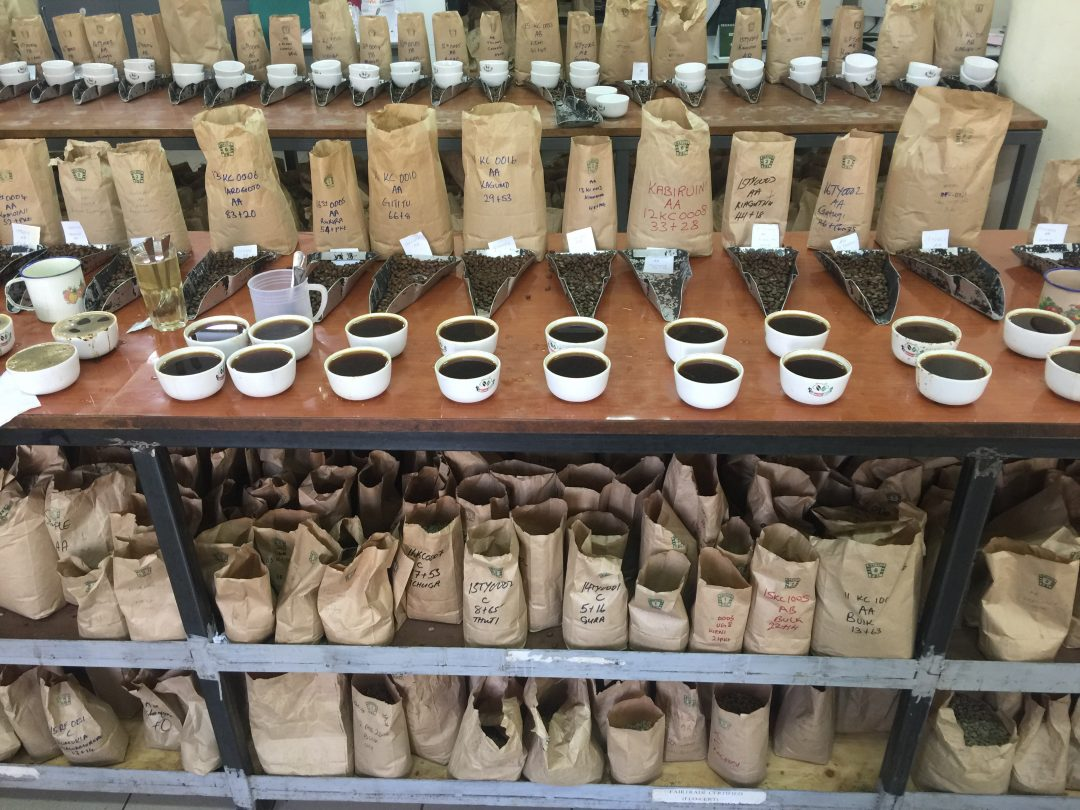 2db0c4e9b7fc Auctioning Coffees at Origin  Kenya s Coffee Exchange - Daily Coffee ...