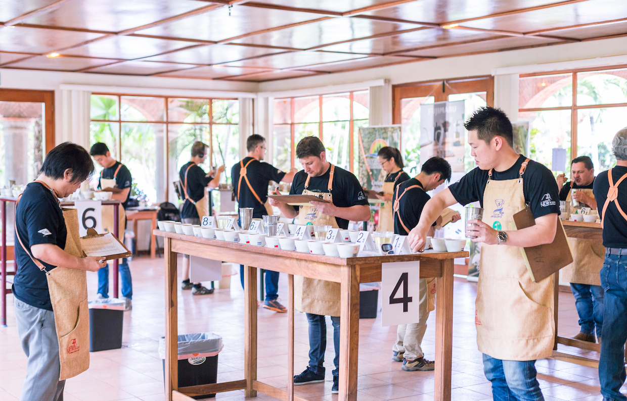 Cup of Excellence Nicaragua