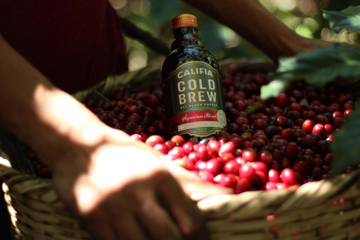 califia farms cold brew
