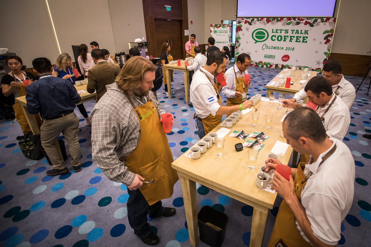 Cupping 3 – Hanz Rippe _ Let's Talk Coffee