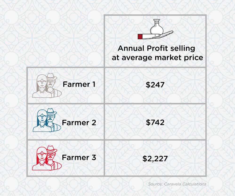 Farmer Annual Profit
