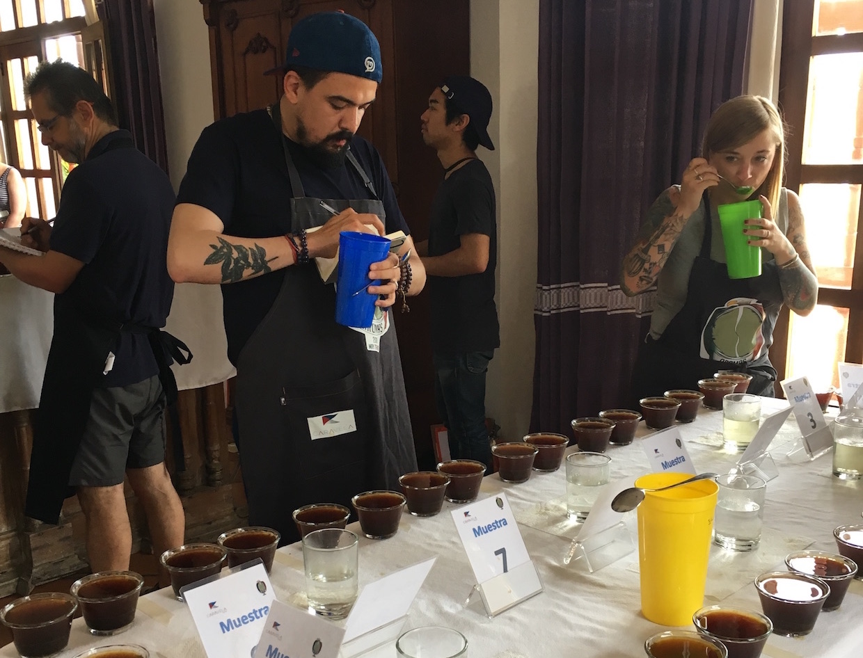 Exploring Some of Mexico's Best Coffees with Caravela's Aromas