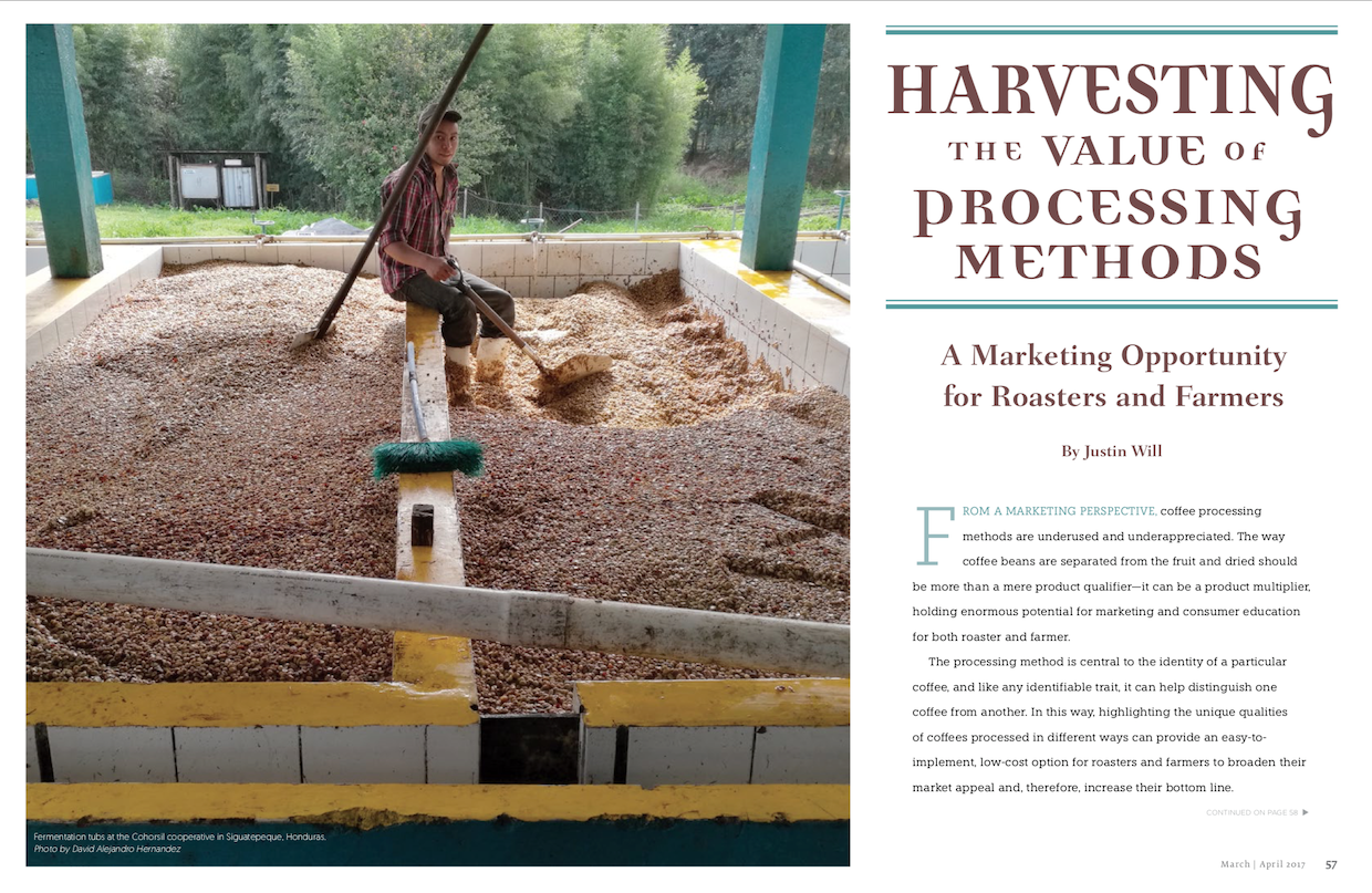 Harvesting the Value of Processing Methods: A Marketing Opportunity for Roasters and Farmers