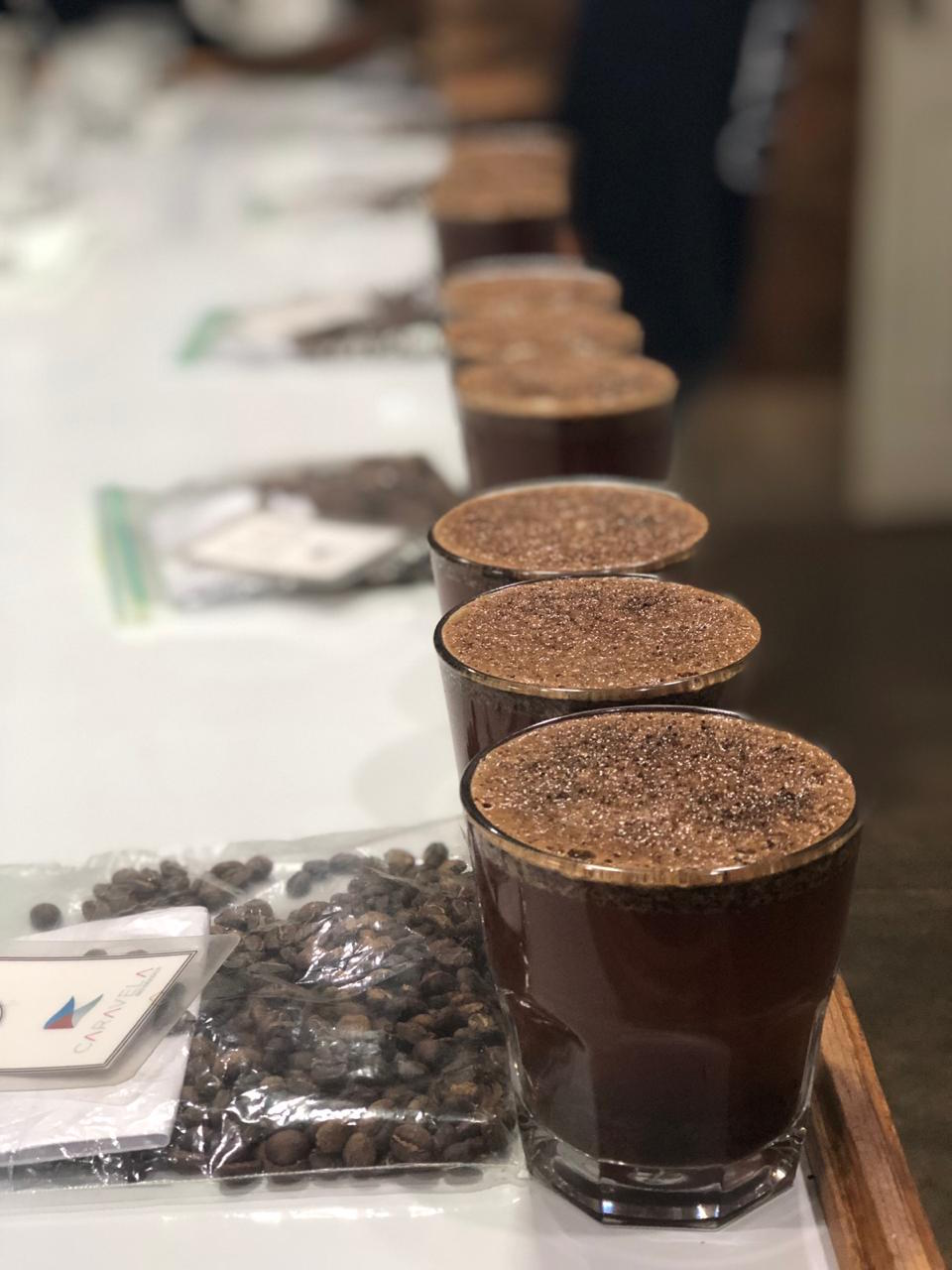 coffee cupping samples