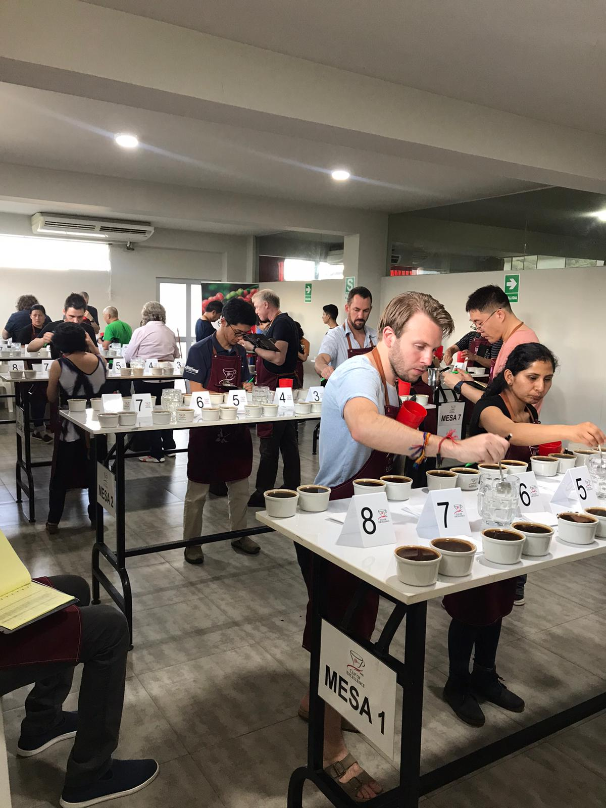 Cup of Excellence Peru